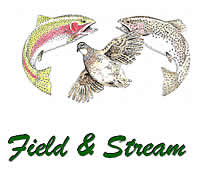 Field and Stream Accommodation in Dullstroom